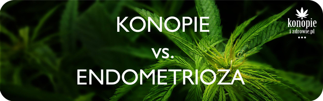 Konopie vs. endometrioza